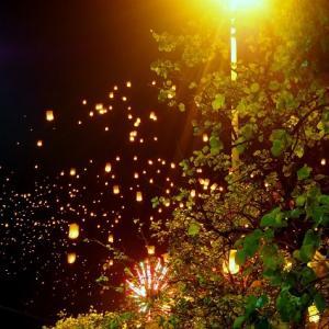 夜空いっぱいのコムローイ、チェンマイで最高の年越し!【年越しチェンマイひとり旅・4日目②】