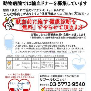 献血(供血)のお願い