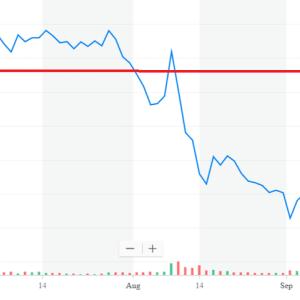 有望企業のIPO(新規公開株)は1~2年経ってから投資せよ