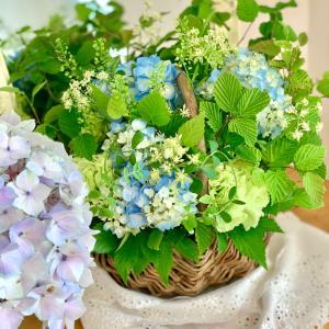 明日・11日のお花のワークショップに、急遽参加したい方はいませんか?
