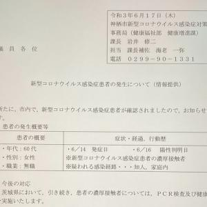 新型コロナウイルス(6月17日)