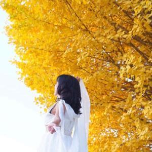黄金の龍さんからのメッセージ あなたは愛そのもので生きているのです