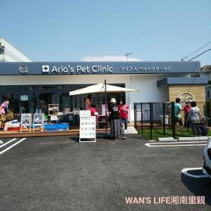 【イベントのお知らせ】9/19アリアス譲渡会
