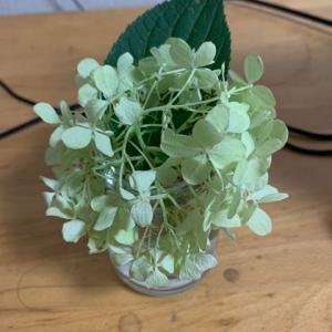 ちょっとした花を飾るだけで気分って変わりますね!