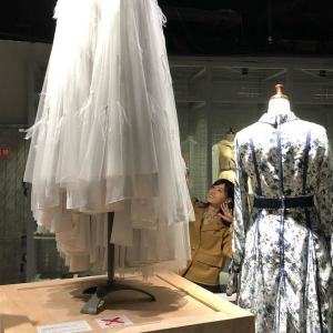 【元乃木坂46】西野七瀬、鳩衣装を見上げるまる・・・