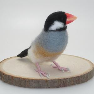 白文鳥、桜文鳥の制作 / その4 - 頭や体を進める