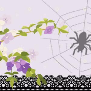 不思議な蜘蛛の夢(過去の振り返りです。)