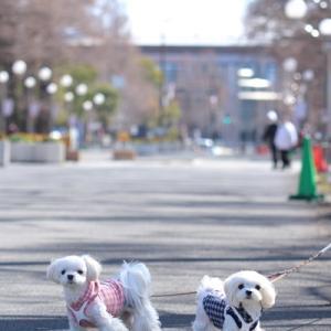 公園散歩 ~鶴見緑地公園~ 前編