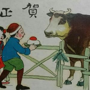絵葉書・・・鏡餅と牛 & 最近買ったお得商品