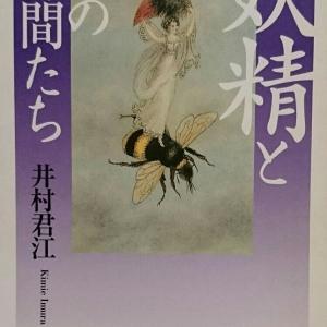 本棚の人魚たち・・・「妖精とその仲間たち」井村君江