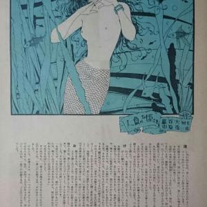 本棚の人魚たち・・・中原淳一の「人魚のお姫さま」