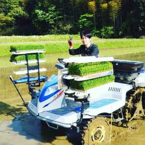 令和元年産米の田植えが始まりました!