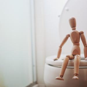 【トイレトレーニング】いきなりトイレで成功?!まったく参考にならない我が子のトイレの現状