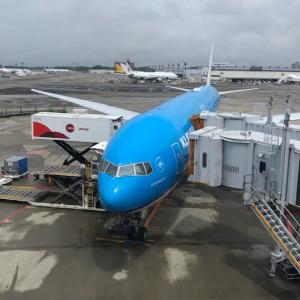 イタリアコロナ>>日本コロナ 日本への一時帰国 4 成田空港に着いてから