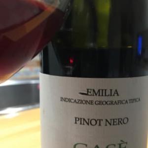 Pinot Nero 2014 Case'