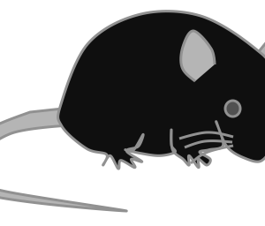 パワーポイントを使ってマウスのイラストを描く方法