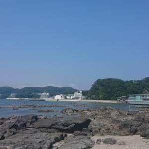 夏は海を感じたい!!@佐島・天神島