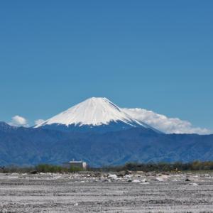 美しい青空の下・・・富士山がさらに美しく。