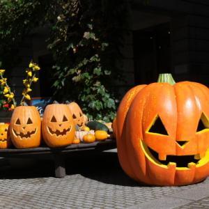 カボチャのお化けがいっぱい。Halloweenですね。