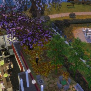 桜の木の下には…【SIMS都市伝説】