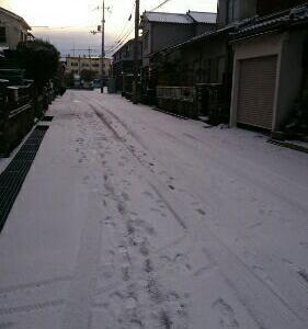 大寒波☆久しぶりの雪