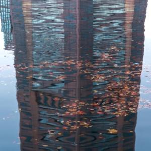 運河を彩る