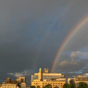 横浜税関に虹