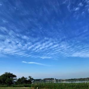 牛久沼と朝の空