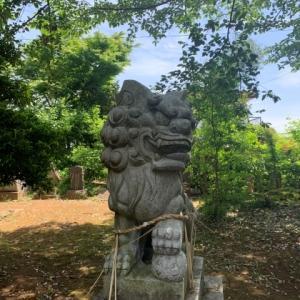 狛犬 1 * 星宮神社