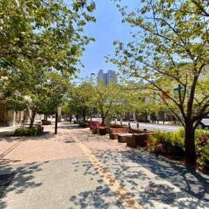 柏の葉キャンパスの街並み
