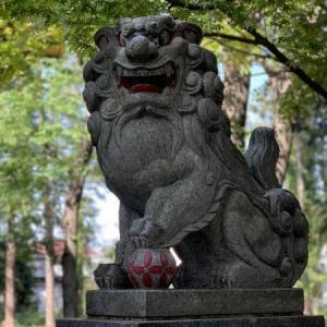 狛犬 4 * 天形星神社