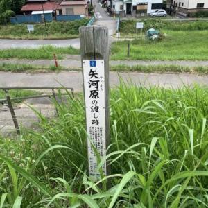 矢河原の渡し跡