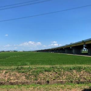 利根川沿いの風景