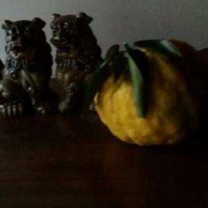 柚畑の訪問者
