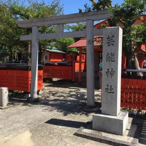 芸能神社で武芸を磨く決意