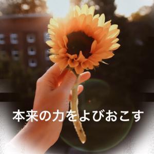 メッセージありがとうございます(*^-^*)