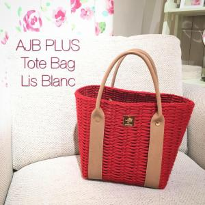 AJB jewelry bag PLUS