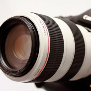 Canon EF70-300mm F4-5.6 L IS USM
