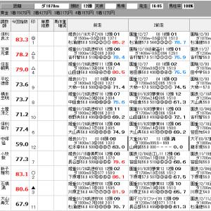 地方競馬 2/18(火) しらこばと賞 他