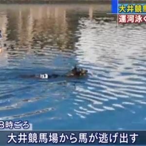 地方競馬 6/21(日) 佐賀がばいダッシュ SP指数