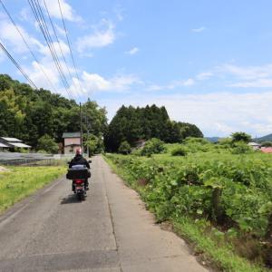 栃木県 那須烏山市 太平寺の清水 湧き水巡り。