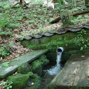 福島県 天栄村 龍生地区の清水 湧き水巡り。