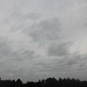 晴れてきた 午後に気温が 夏日に
