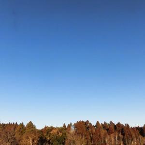 日差しある 北風強く 寒かった
