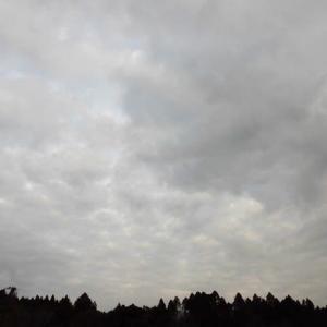 今日の空 予報通りの 曇り空