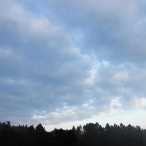 日替わりで 今日の昼間は 春陽気