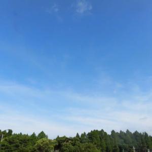 立秋も 猛暑日記録 酷暑なり