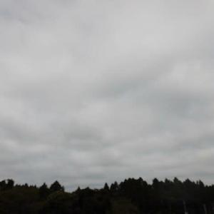 太陽を 見ることなかった 今日の空