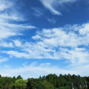 真夏日が 戻ってきたよ 良い天気