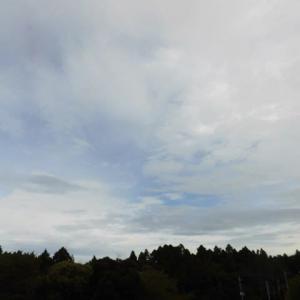 曇でも 猛暑日一歩 手前まで